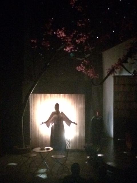 La producción brilla con gran sentido de arte, estética, simbolismos y magia. (Foto Joselo Arroyo para Fundación Nacional para la Cultura Popular)