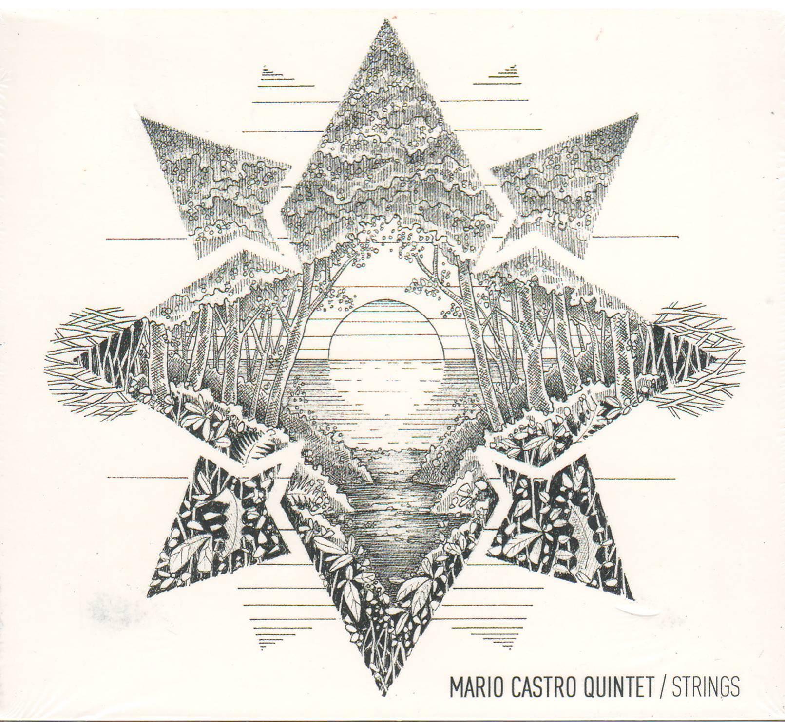 mario castro nieves strings 2014
